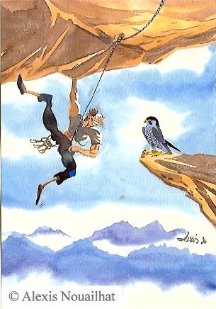 le grimpeur et le faucon pélerin
