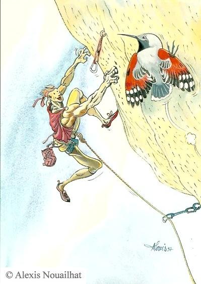 le grimpeur et le tichodrome