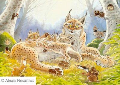 la famille de lynx