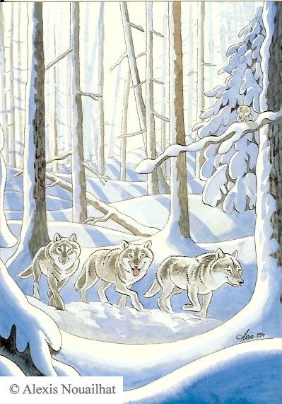 les 3 loups
