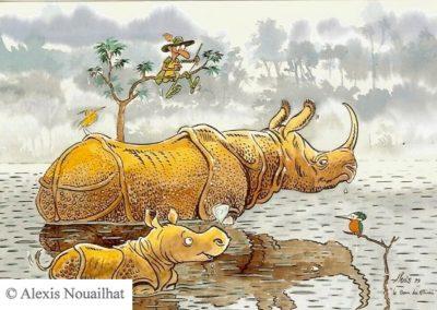 rhinocéros unicorne