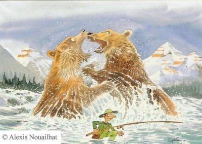 le combat des grizzly