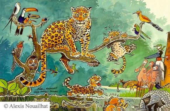 le jaguar Pantanal