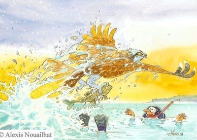 R103 le balbuzard pêcheur