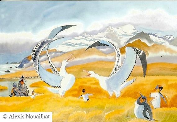 la parade des albatros