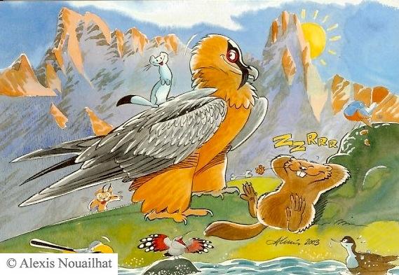 le gypaète et la marmotte
