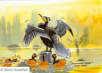 le grand cormoran et les grèbes à cou noir