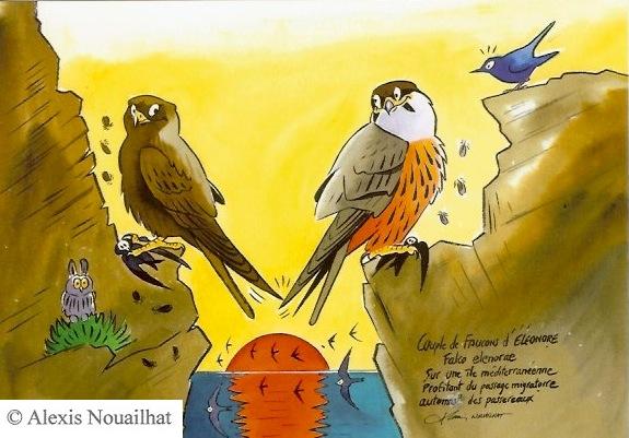 le couple de faucons d'éléonore