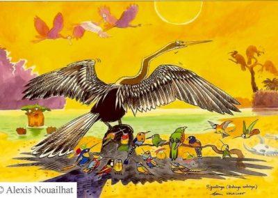 l'anhinga noir Pantanal