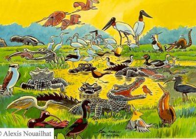 les oiseaux et les caïmans Pantanal